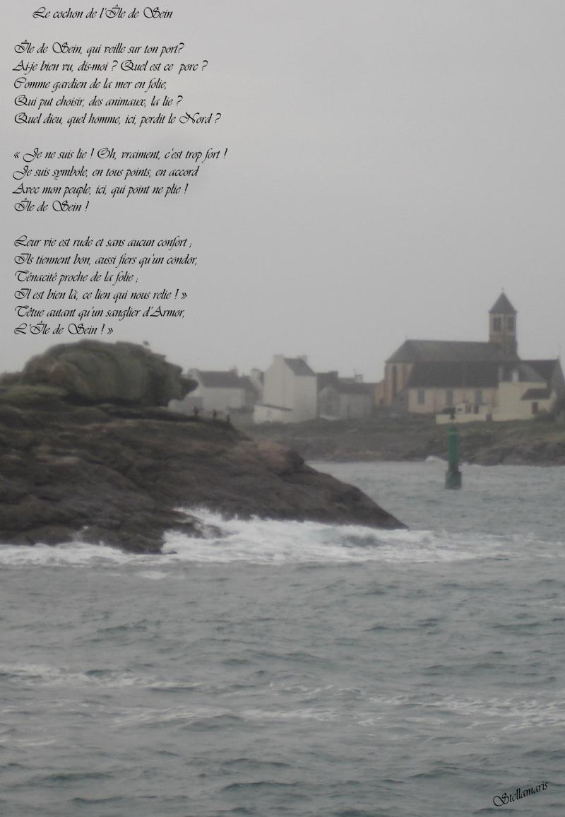 Le cochon de l'Île de Sein / / Île de Sein, qui veille sur ton port? / Ai-je bien vu, dis-moi ? Quel est ce porc ? / Comme gardien de la mer en folie, / Qui put choisir, des animaux, la lie ? / Quel dieu, quel homme, ici, perdit le Nord ? / / « Je ne suis lie ! Oh, vraiment, c'est trop fort ! / Je suis symbole, en tous points, en accord / Avec mon peuple, ici, qui point ne plie ! / Île de Sein ! / / Leur vie est rude et sans aucun confort ; / Ils tiennent bon, aussi fiers qu'un condor, / Ténacité proche de la folie ; / Il est bien là, ce lien qui nous relie ! » / Têtue autant qu'un sanglier d'Armor, / L'Île de Sein ! » / / Stellamaris